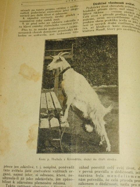 Český rolník - 1923 - 1924 - obrázkový časopis pro vzdělání lidu venkovského a přátele přírody
