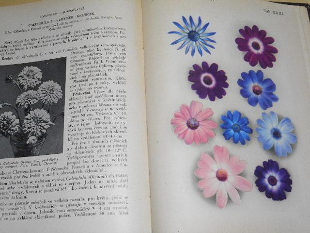 Zahradnické květinářství - pěstování nejdůležitějších tržních a hrnkových rostlin - Josef Vaněk - 1949 - I. díl