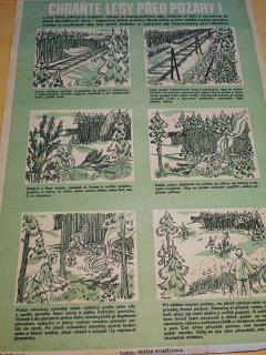 Chraňte lesy před požáry! - plakát - 1953 - Státní pojišťovna