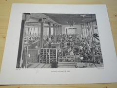 Baťovy továrny ve Zlíně - fotografie - tisk - foto Felix Goltz