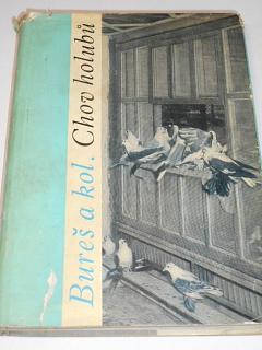 Chov holubů - Jan Bureš - 1965