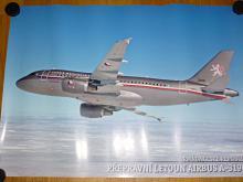 Airbus A-319 CJ - Armáda České republiky - plakát
