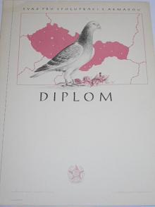 Svazarm - Svaz pro spolupráci s armádou - diplom - 1954 - poštovní holub